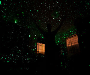 Room with glow in the dark stars